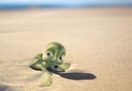 Sammys Abenteuer - Eine kleine Schildkröte auf dem...en...