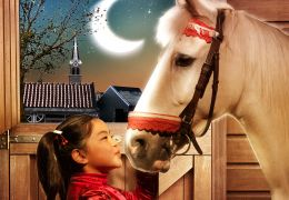 Winky will ein Pferd