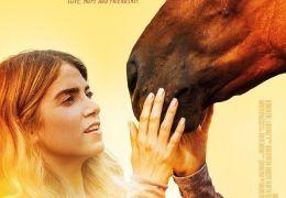The Sunday Horse