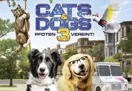 Cats & Dogs 3 - Pfoten vereint!