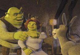 Shrek 2   2004 Dreamworks LLC.
