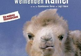 Die Geschichte vom weinenden Kamel  PROKINO Filmverleih GmbH