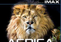 Afrika - Die Serengeti