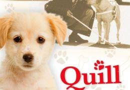 Ein Hund namens Quill