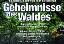 Geheimnisse des Waldes - Plakat