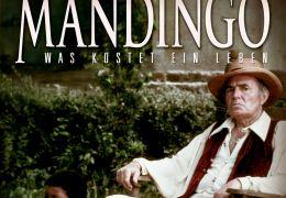 Das Willkommenheißen Von Mandingo