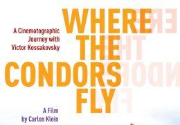 Where the Condors fly - Plakat