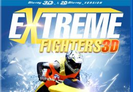 Extreme Fighters 3D
