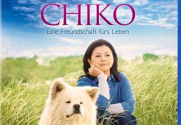 Infos & Credits: Chiko - EineLeben