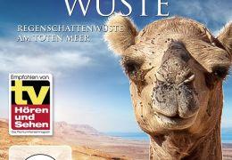 Faszination Wüste: Judäische Wüste