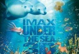 Under the Sea 3D - Paradiese im Meer