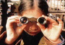 Harriet die kleine Detektivin
