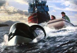 Free Willy 3 : Die Rettung